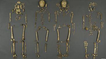 _84518963_skeletonssmall