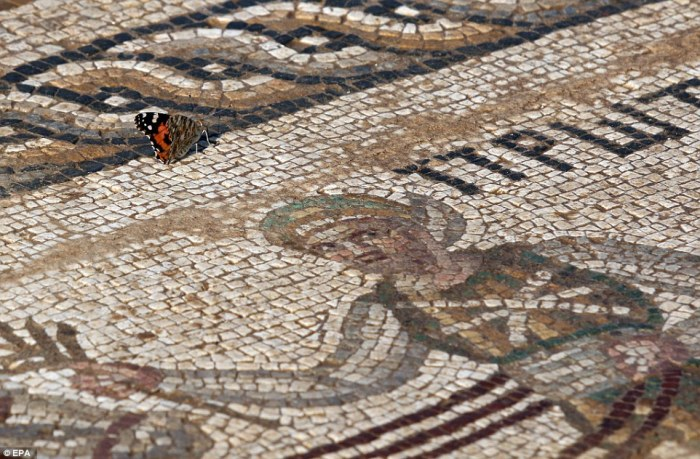 mosaico_cipro.jpg