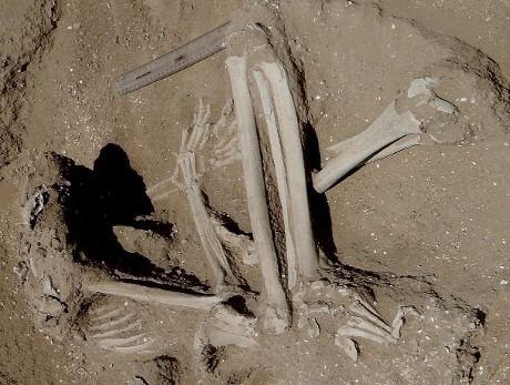 guerra_neolitico.jpg