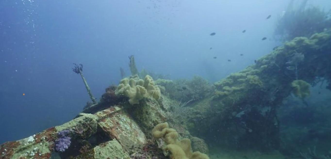 Oceano pacifico, ritrovati due aerei Usa della seconda guerra mondiale